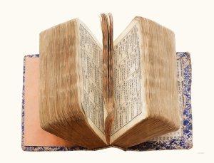 Liu Dan, Dictionary